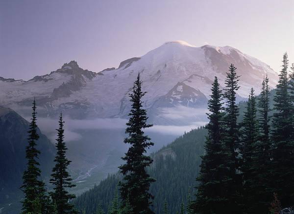 00174583 Art Print featuring the photograph Mt Rainier As Seen At Sunrise Mt by Tim Fitzharris