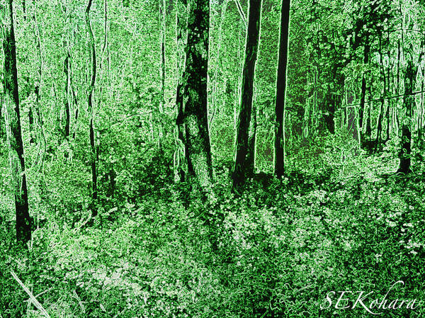 Green Art Print featuring the photograph Neon Forest by Sarah E Kohara
