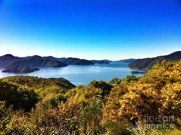 New Zealand Art Print featuring the photograph On And On by Alisha Robertson