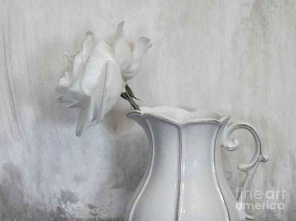 Photo Art Print featuring the photograph Pure White by Marsha Heiken