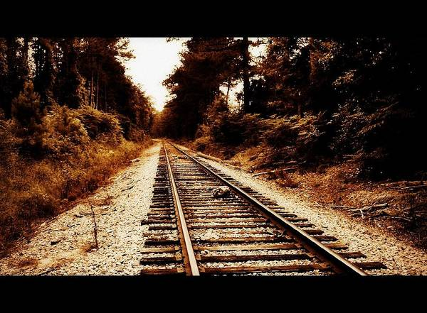Rr Art Print featuring the photograph Rr Tracks by Lizabeth Hanes