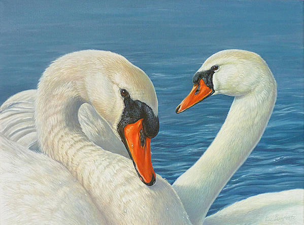 Swans Art Print featuring the painting Swans In Love by Lisa Bonforte