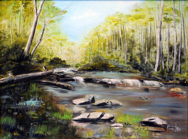 Landscape Print featuring the painting Upstate South Carolina Trout Stream by Phil Burton