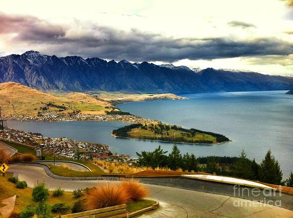 New Zealand Art Print featuring the photograph View Over Welly by Alisha Robertson