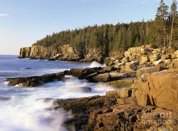 Atlantic Ocean Art Print featuring the photograph Acadia National Park - Maine Usa by Erin Paul Donovan