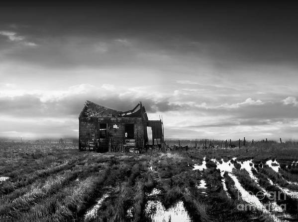 Architecture Art Print featuring the photograph The Shack by Dana DiPasquale