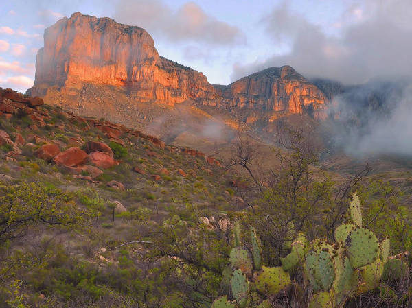 Guadalupe Mountains Art Print featuring the photograph Guadalupe Mountains Sunrise by Stephen Vecchiotti