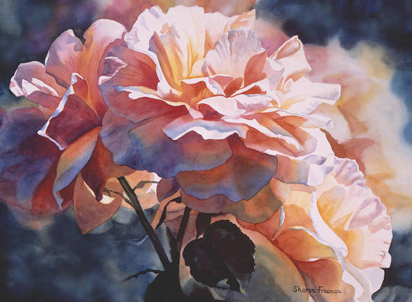Rose Art Print featuring the painting Afternoon Rose by Sharon Freeman