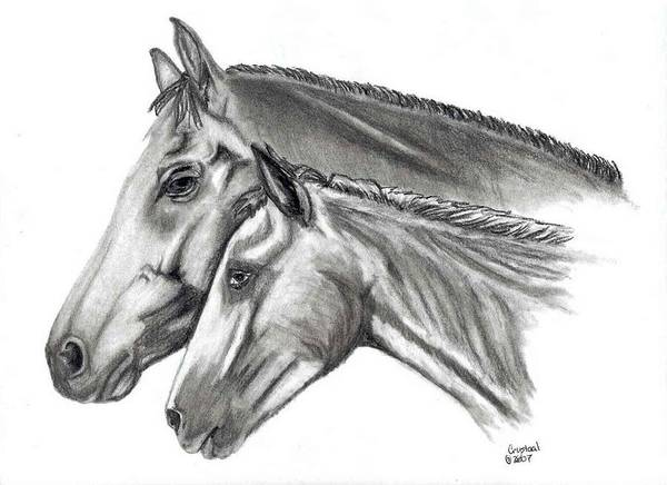 Charcoal Art Print featuring the drawing Aj And Candy by Crystal Suppes