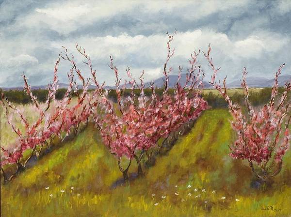 Apple Tree Art Print featuring the painting Apple Hill Springtime by Brenda Williams