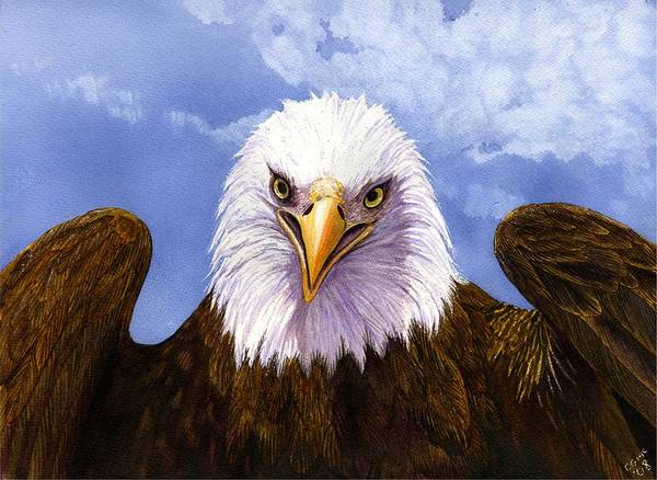 Eagle Art Print featuring the painting Bald Eagle by Catherine G McElroy