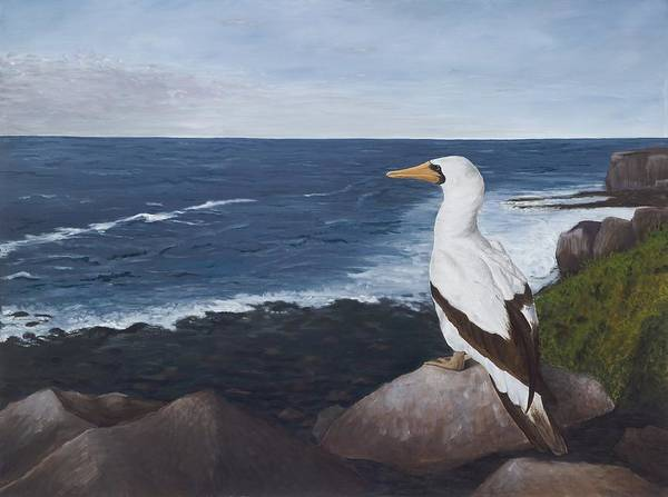 Nazca Booby Art Print featuring the painting Beachside View by Elizabeth Rieke Hefley