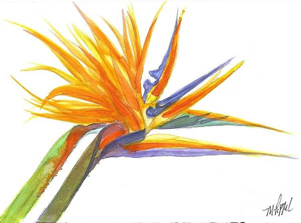 Bird Of Paradise Art Print featuring the painting Bird Of Paradise by Midge Pippel
