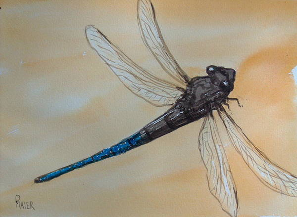 Dragonfly Art Print featuring the painting Blue Tale by Pete Maier