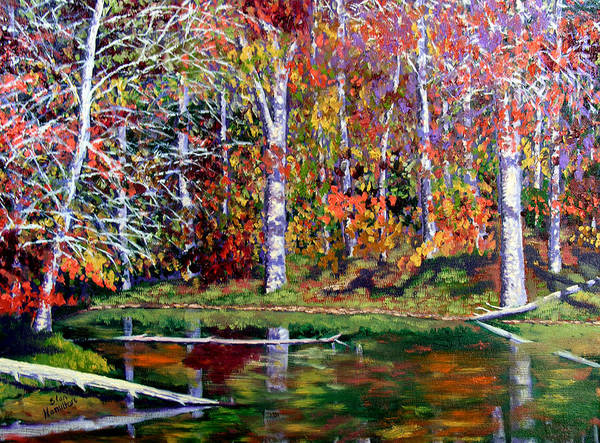 Fall Art Print featuring the painting Brown County In Fall by Stan Hamilton