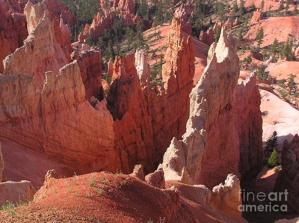 Bryce Art Print featuring the photograph Bryce Canyon Look by Louise Magno