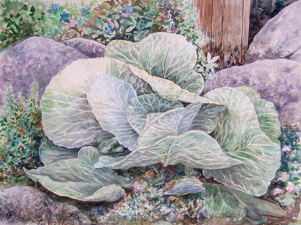 Leaves Art Print featuring the painting Cabbage Head by Valerie Meotti