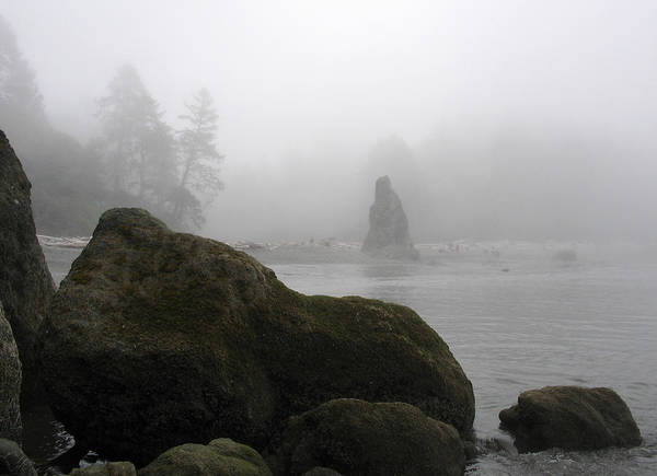 Ocean Art Print featuring the photograph Coastal Fog by Ty Nichols