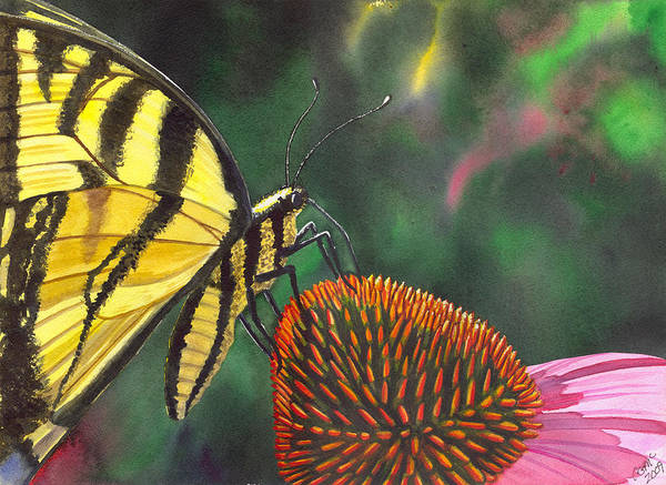 Butterfly Art Print featuring the painting Cone Flower by Catherine G McElroy