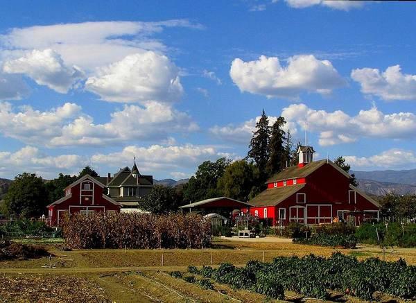 Farm Art Print featuring the photograph Farm House by Scott Brown