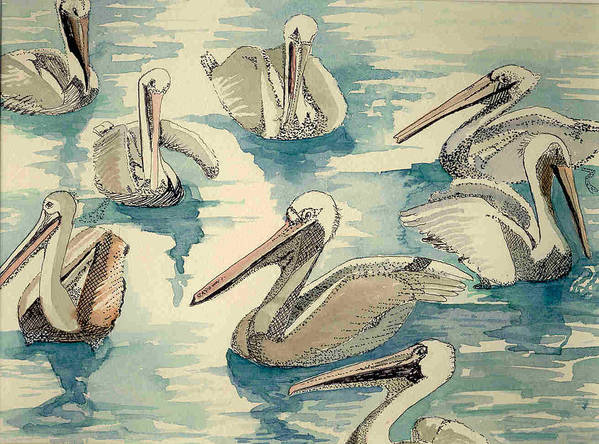 Pelicans Art Print featuring the painting Feeding Pelicans by Rebecca Marona