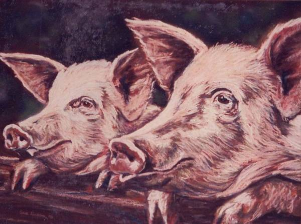 Pigs Art Print featuring the painting Feedtime by Sue Linton