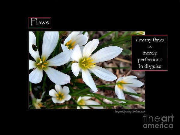 Flowers Art Print featuring the photograph Flaws by Amy Delaine