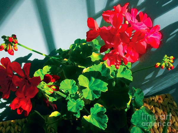 Red Flowers Art Print featuring the photograph Geranium by David Klaboe