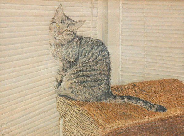 Tabby Cat Art Print featuring the painting Goldberry by Miriam A Kilmer