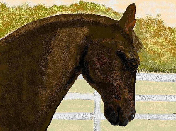 Horse Art Print featuring the digital art Golden Chance by Carole Boyd