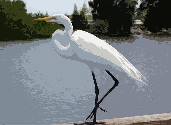 Great Art Print featuring the painting Great Egret  Ardea Alba by Allan Hughes