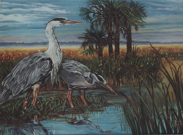 Herons Art Print featuring the painting Herons by Diann Baggett
