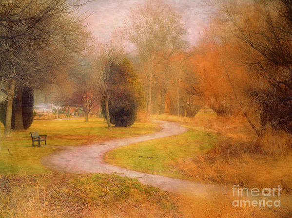 Road Art Print featuring the photograph January 14 2010 by Tara Turner