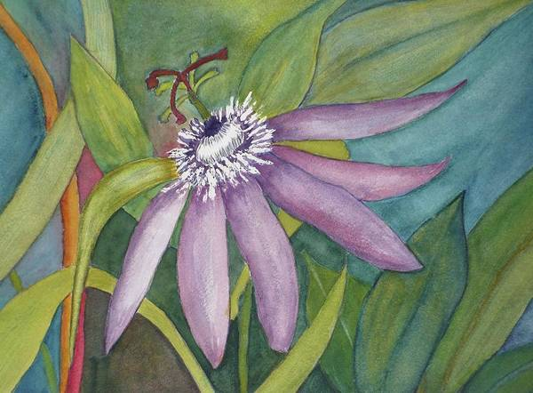 Flower Art Print featuring the painting Maypop by Stella Schaefer