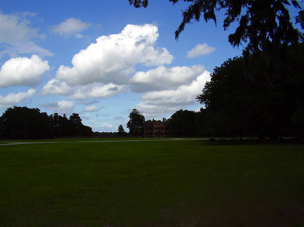 Middleton Place Art Print featuring the photograph Middleton Place by Flavia Westerwelle