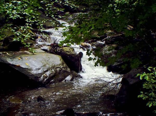 Creek Art Print featuring the photograph Montreat Creek North Carolina by Eva Thomas