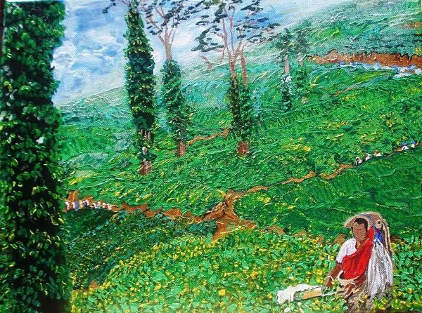 Munnar Tea Gardens Art Print by Narayan Iyer