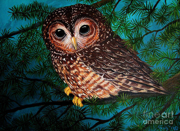 Owl Painting Art Print featuring the painting Northern Spotted Owl by Nick Gustafson