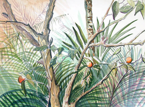 Fruit Art Print featuring the painting Orange Tree by Mindy Newman