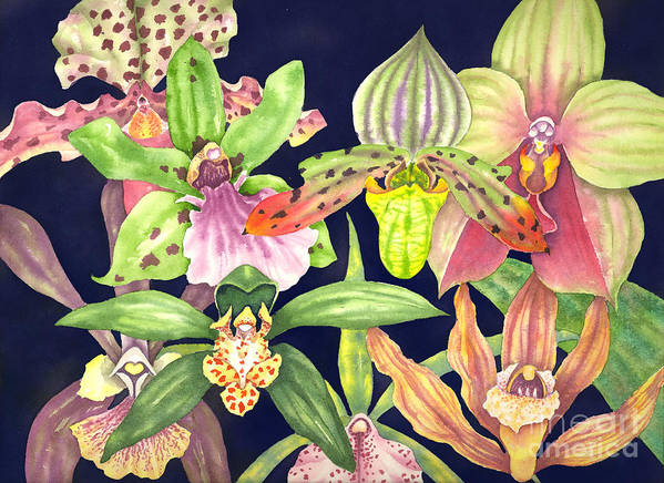 Orchids Art Print featuring the painting Orchids by Lucy Arnold