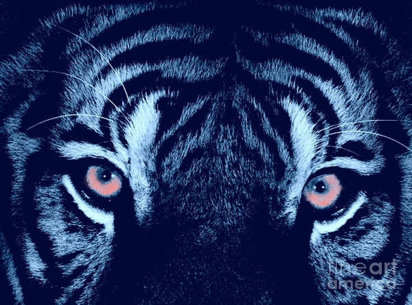 Tiger Art Print featuring the digital art Passionate Hunter by Scott Davis