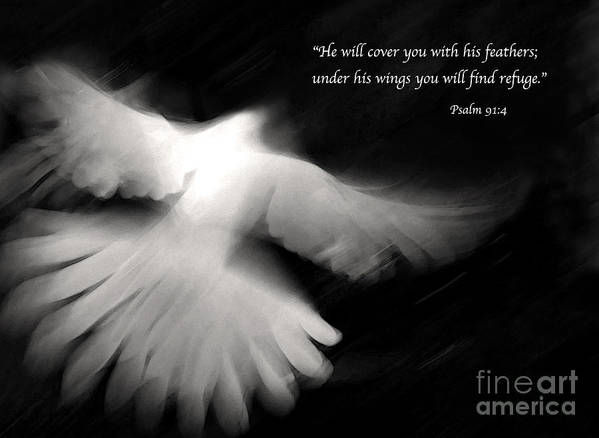 Bible Art Print featuring the photograph Psalm 91 by Glennis Siverson