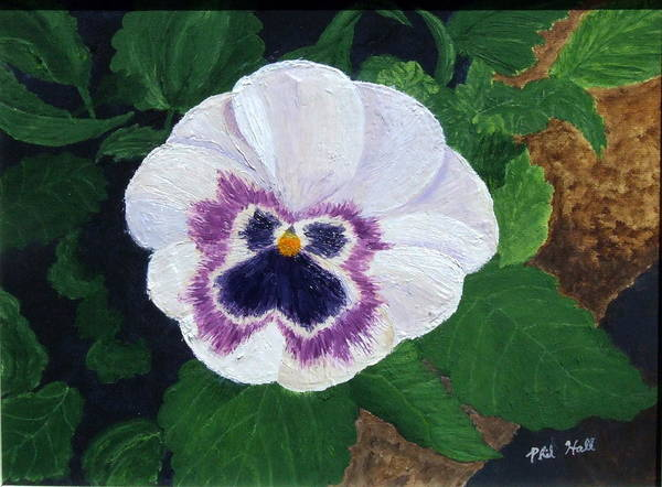 Purple Pansy Art Print featuring the painting Purple Pansy by Philip Hall
