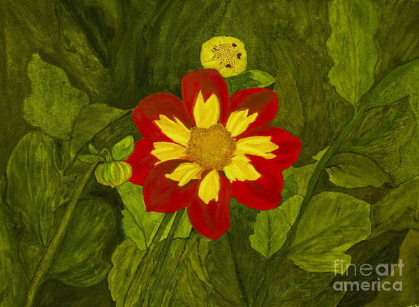 Red Art Print featuring the painting Red Dahlia by Louise Magno