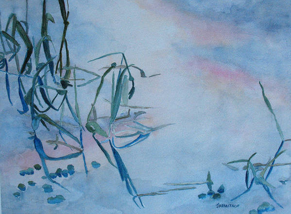 Reeds Art Print featuring the painting Reeds At Sunset by Jenny Armitage