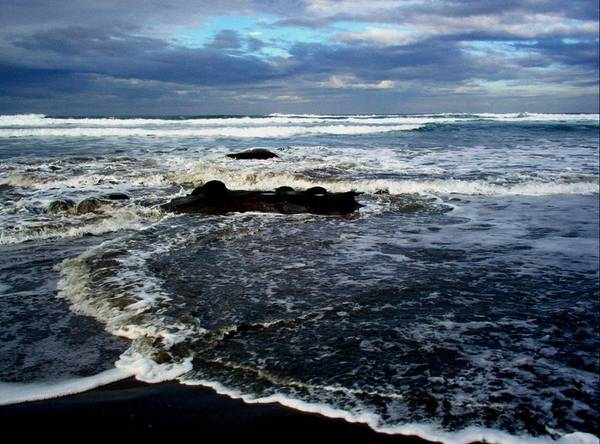 Ocean Art Print featuring the photograph Rough Waters by Trisha Allard