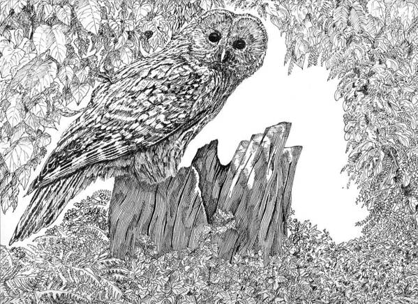Birds Art Print featuring the mixed media Russian Owl by Leonie Bell
