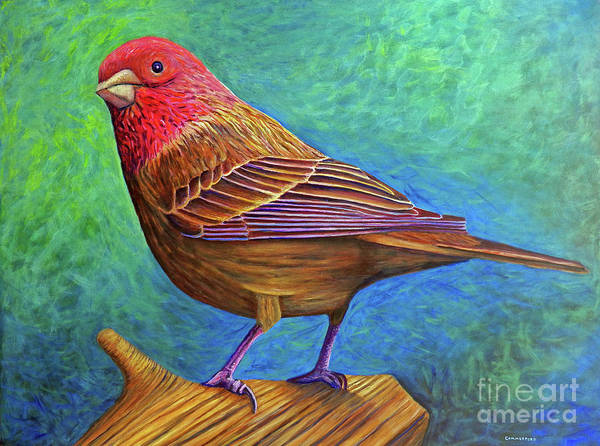 Bird Art Print featuring the painting Sacred Space by Brian Commerford