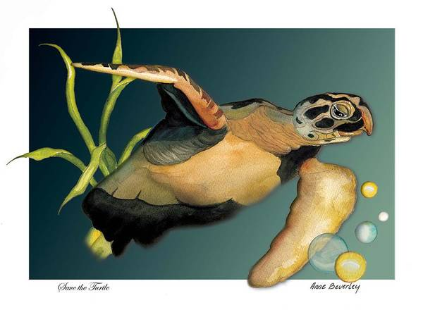 Turtle Art Print featuring the painting Save The Turtle by Anne Beverley-Stamps