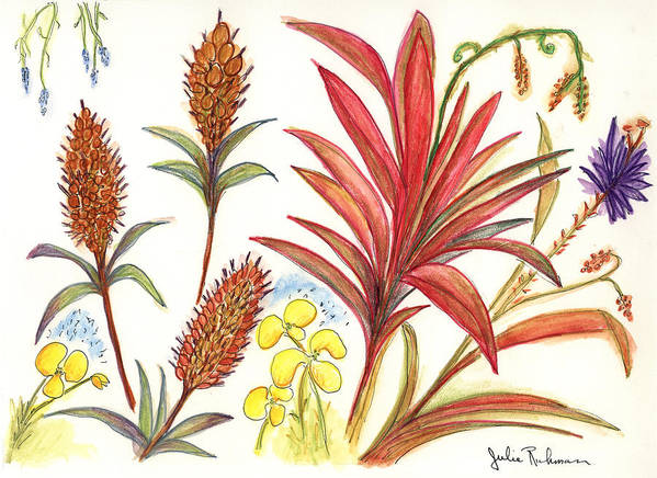 Red Flowers Art Print featuring the painting Spiky Florida Flowers by Julie Richman